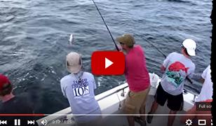 Fishing Video